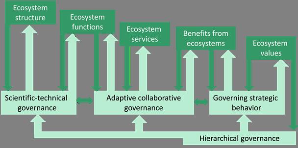 Ecosystem governance cascade