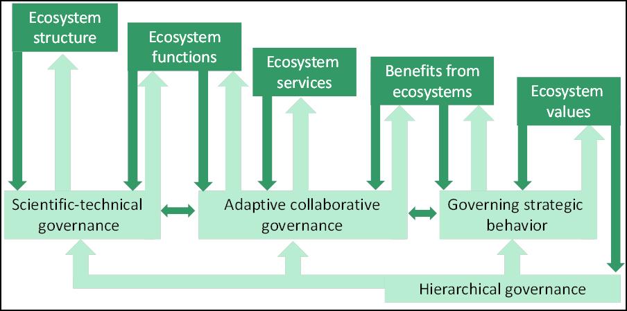 Governance cascade